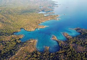 Akdeniz Koruma Derneği